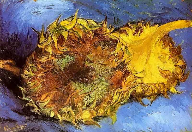 Van Gogh, natura morta con due girasoli, 1888