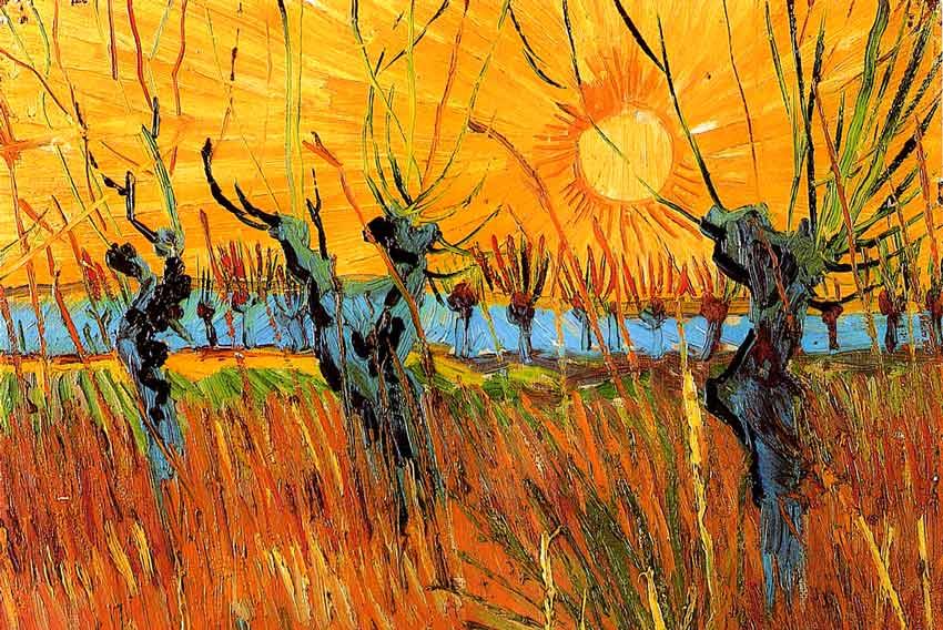 Vincent Van Gogh, salici al tramonto, 1888