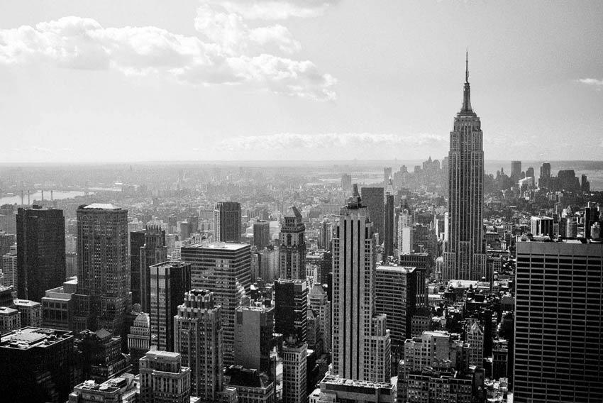 New York Arte e politica