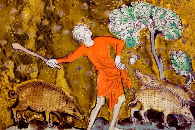 Animali nel medioevo