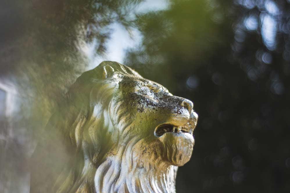 La conquista di un regno: il leone nel medioevo