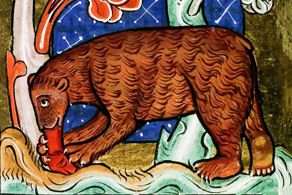 L'orso nella letteratura medievale
