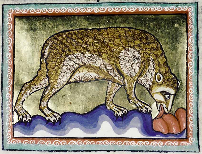 orso miniatura medievale