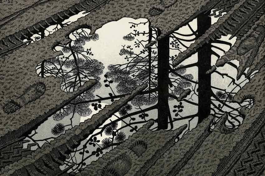 Maurits Cornelis Escher, Superficie increspata, 1950