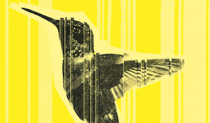 Sandro Veronesi Il colibrì